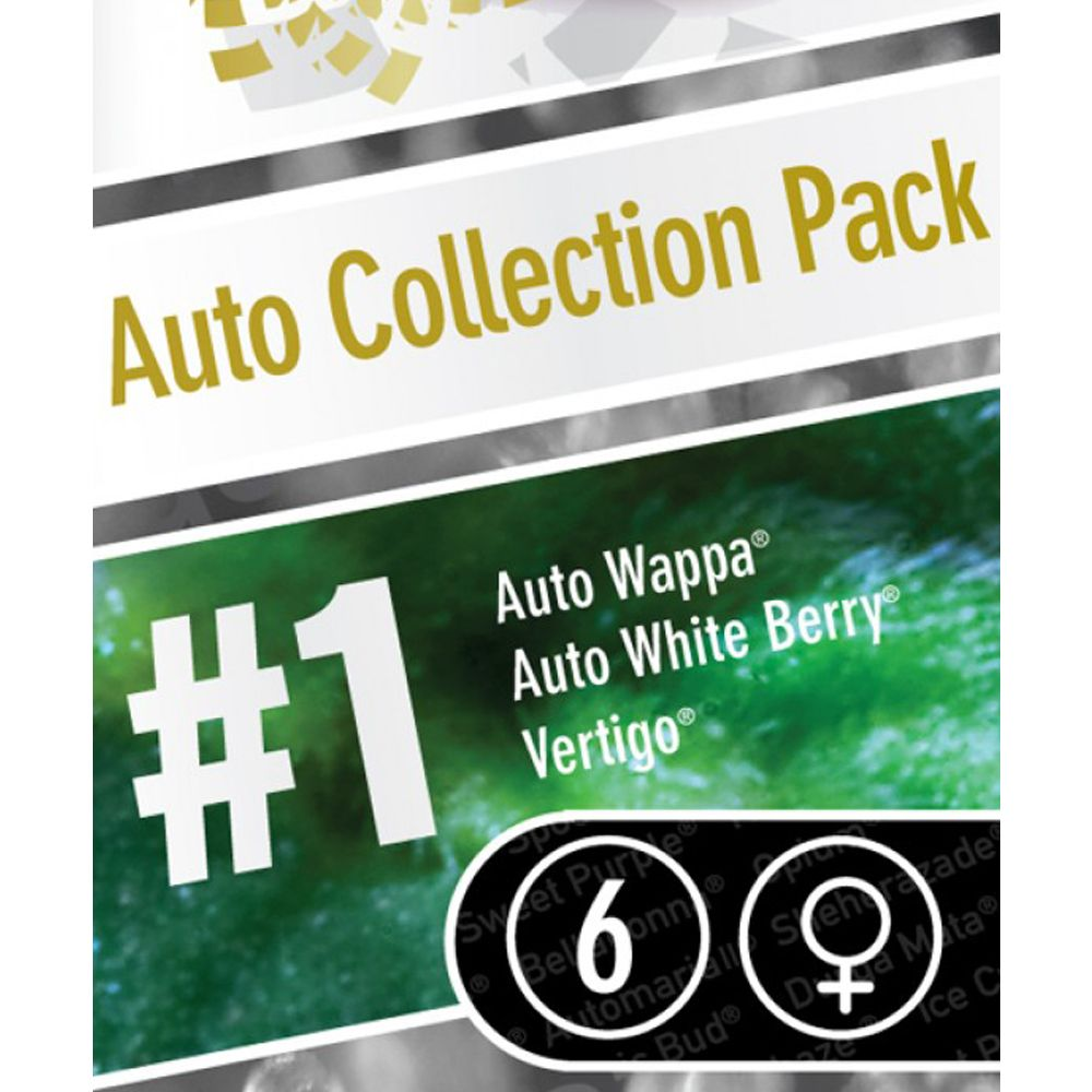 Auto Collection pack #1 6 Seeds