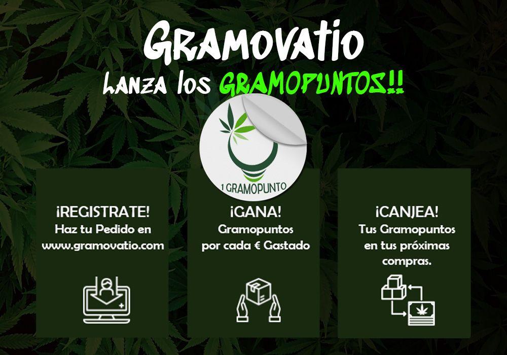 banner-gramopuntos-growshop-gramovatio-madrid