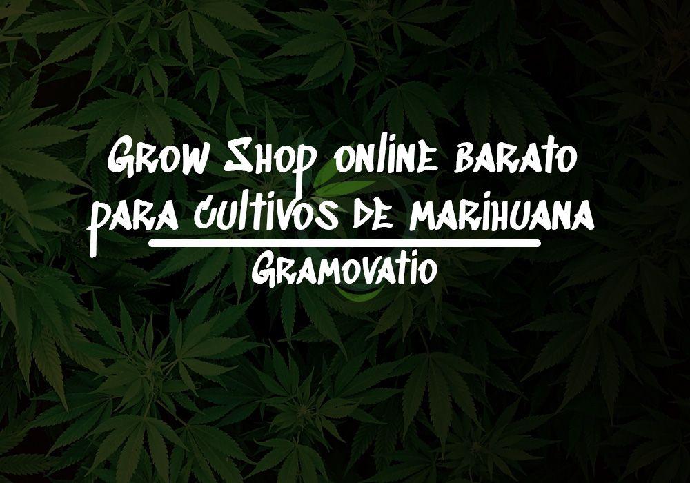 grow shop online barato