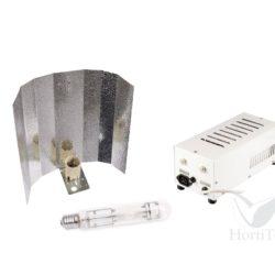 Kit master gear clase ii 600 w (3100 k) parxtreme micropunto