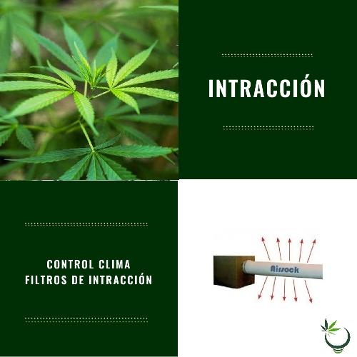 Filtros Intracción
