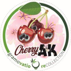 cherry ak