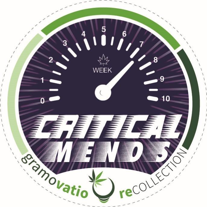 critical-menos
